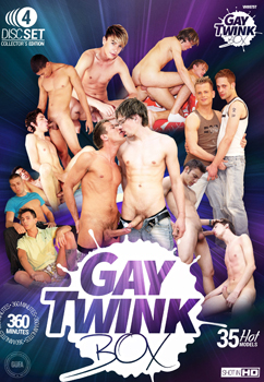 LOT 4 DVD GAY TWINK